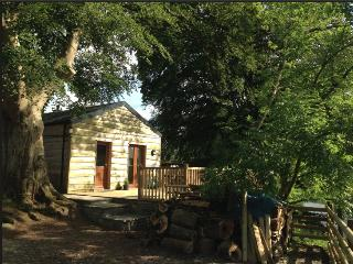 Nice Cabin with Deck and Internet Access - Llanfor vacation rentals
