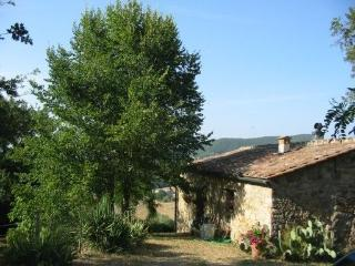 Romantic 1 bedroom Cottage in Radicondoli with Kettle - Radicondoli vacation rentals
