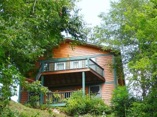 Mystic Mountain Nottely Riverfront Chalet - Murphy vacation rentals