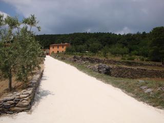 Tuscany Country House - Villa Cima alla Serra - Buti vacation rentals