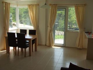 2 bedroom Condo with Dishwasher in Dalaman - Dalaman vacation rentals