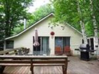 Algonquin Highlands Nice 3 Bedroom Private Cottage - Dwight vacation rentals