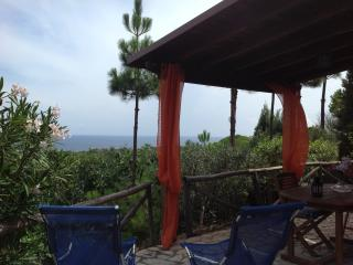 Nice House with Satellite Or Cable TV and Outdoor Dining Area - Domus de Maria vacation rentals