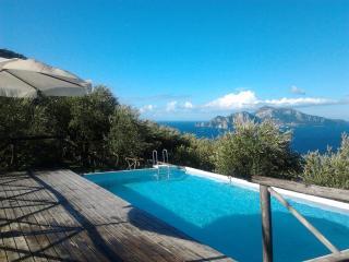 "Rustico ""La Pinella"" - Massa Lubrense vacation rentals"