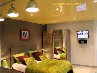 1 bedroom Condo with Internet Access in Caudebec-en-Caux - Caudebec-en-Caux vacation rentals