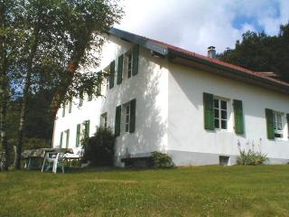 Grand GÎTE en Plein Parc Naturel Alt: 600 m. - Le Thillot vacation rentals