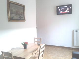 Charming and confortable apartment - Turin vacation rentals