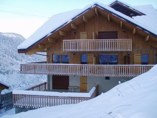 Apartment close to lifts - Vaujany vacation rentals