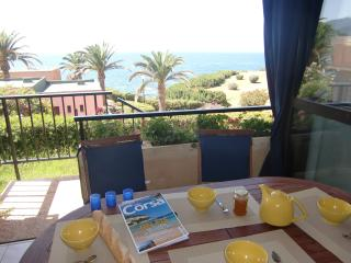 Nice Condo with Internet Access and Dishwasher - Sagone vacation rentals