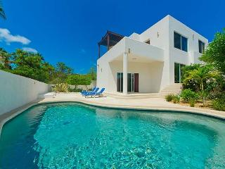 SJD - CRIS3 contemporary lines and casual elegance - Cabo San Lucas vacation rentals
