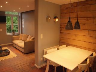 Appartement d'hôtes avec terrasse prés Lille - La Madeleine vacation rentals