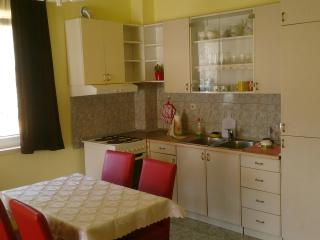 Nice Condo with Internet Access and Towels Provided - Ploce vacation rentals