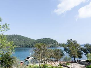 Lovely room with sea view-1 - Mljet vacation rentals