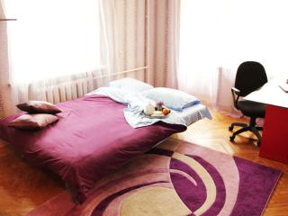 2-bedroom apartment in the cen - Moscow vacation rentals