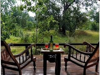 Nice Tented camp with Internet Access and Shared Outdoor Pool - Hambantota vacation rentals