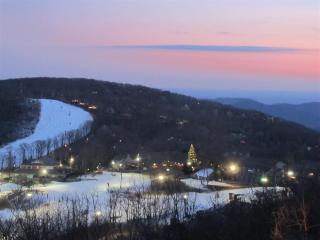 Cozy 1BR Wintergreen Resort Condo - The Ultimate Mountain Getaway - Roseland vacation rentals