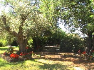 La Villa degli Etruschi - Cerveteri vacation rentals