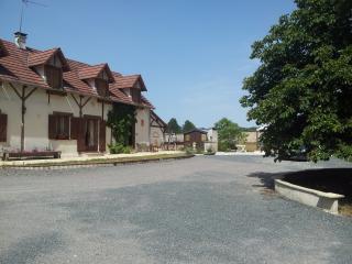 Gd Gîte avec piscine, jacuzzi-sauna-fitness 4 épis - Neuvy-sur-Barangeon vacation rentals