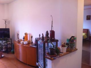 Romantic 1 bedroom Penthouse in Acilia - Acilia vacation rentals