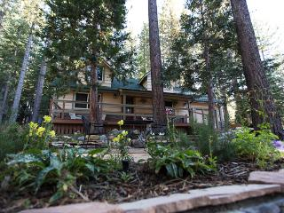 Recently Renovated 3BR Forest Chalet in South Lake Tahoe - 10 Minutes to Heavenly & Sierra- W/Hot Tub! - South Lake Tahoe vacation rentals