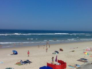 Vivenda entre o mar e a ria - Centro Region vacation rentals