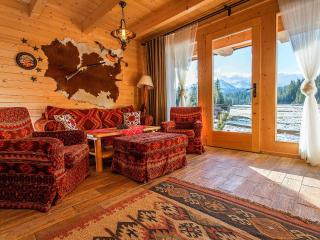 Nice 3 bedroom Cottage in Bialka Tatrzanska - Bialka Tatrzanska vacation rentals