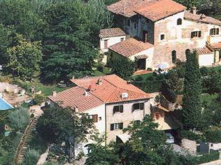 Nice Condo with Internet Access and Garden - Tavarnelle Val di Pesa vacation rentals