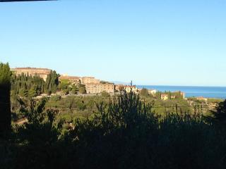 Nice 1 bedroom Castagneto Carducci Condo with Central Heating - Castagneto Carducci vacation rentals