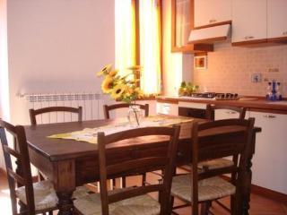 Nice 2 bedroom Borgomaro Apartment with Internet Access - Borgomaro vacation rentals