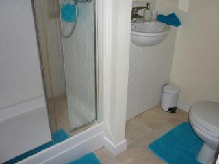 a private room wiith its own bathoom parking wi-fi - Edinburgh vacation rentals