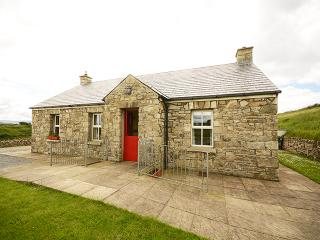 Nice Cottage with DVD Player and Fireplace - Ballyshannon vacation rentals