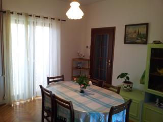Nice 3 bedroom Condo in Island Ugljan - Island Ugljan vacation rentals
