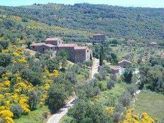 Passignano Sul Trasimeno - 68029001 - Passignano Sul Trasimeno vacation rentals