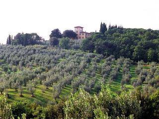Villa Tavernaccia - Romola vacation rentals