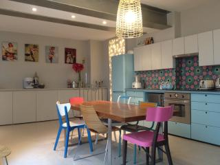 Grand duplex en plein centre de Paris - Antony vacation rentals