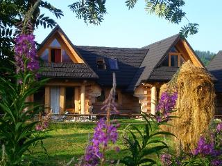 Nice Cottage with Internet Access and Balcony - Bialka Tatrzanska vacation rentals