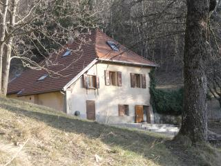 Lovely 3 bedroom House in Grenoble - Grenoble vacation rentals