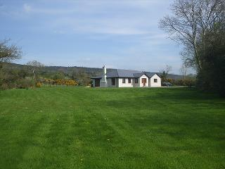 Nice 3 bedroom Bungalow in Bansha with Dishwasher - Bansha vacation rentals