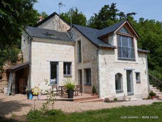Cosy gite - 2-4 p, Saumur, Loire Valley - Les Rosiers sur Loire vacation rentals