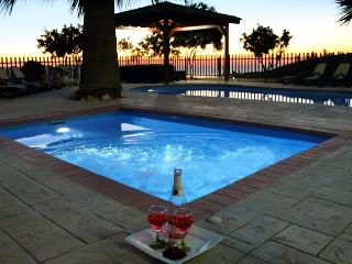 Nice Villa with Internet Access and A/C - Steni vacation rentals