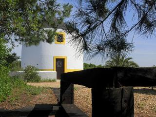 Romantic 1 bedroom Rio Maior Windmill with Grill - Rio Maior vacation rentals