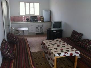 Cozy 2 bedroom Condo in Mirleft - Mirleft vacation rentals