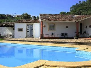Nice Villa with Television and DVD Player - Rio Maior vacation rentals