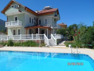 Detached 6 Bed Villa in Ovacik with private pool - Ovacik vacation rentals
