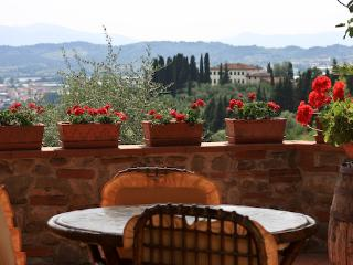 Country house in beautiful olive grove in Tuscany - Uzzano vacation rentals