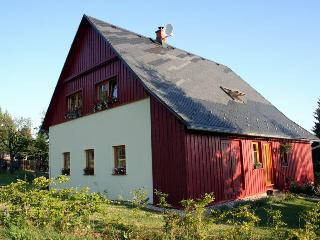 Nice Condo with Internet Access and Refrigerator - Liberec vacation rentals