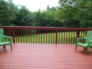 Catskills home near Roscoe New York - Hancock vacation rentals