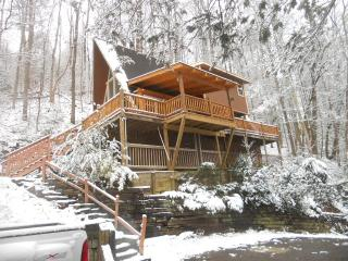 919 Great Priced Affordable Cozy Cabin Gatlinburg - Gatlinburg vacation rentals