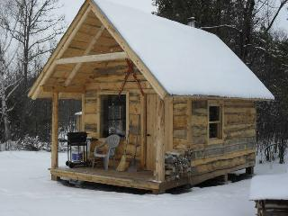 Small Cabin in the Woods - Fitzroy Harbour vacation rentals