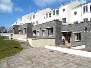 Spanish Cove Holiday Homes (3 Bed) - Kilkee vacation rentals